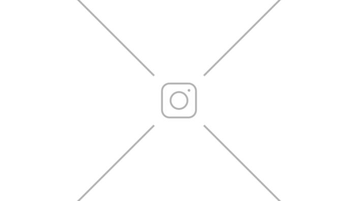 Значок металлический Кошка (51881) от 490 руб