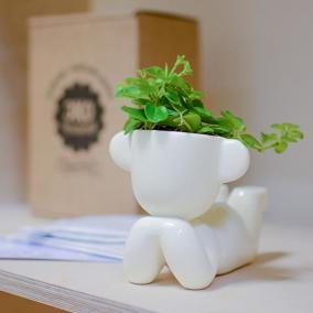 Набор для выращивания Eco Мечтатель с ушками цена от 850 руб