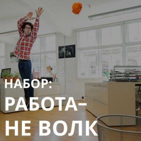 Выгодный набор: Работа не волк цена от 1 349 руб