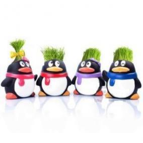 "Травянчик ""Пингвин"" цена от 480 руб"